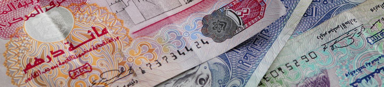 Dollárt vagy Eurót érdemes hozni?