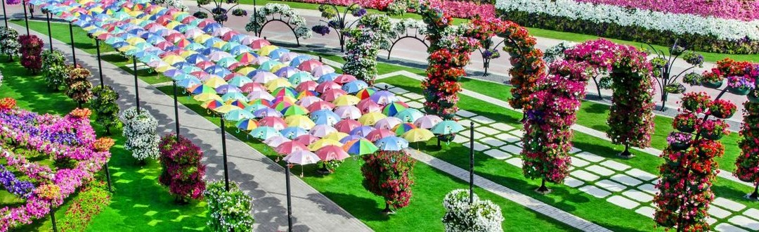 Védett: Miracle Garden – Dubai csodakertje